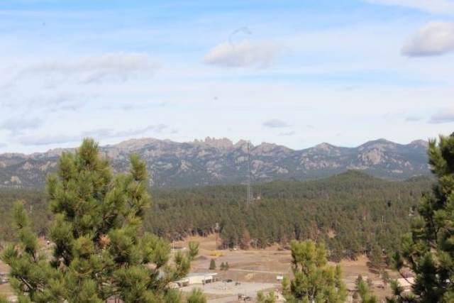 TBD Wright Drive, Custer, SD 57730 (MLS #66318) :: VIP Properties