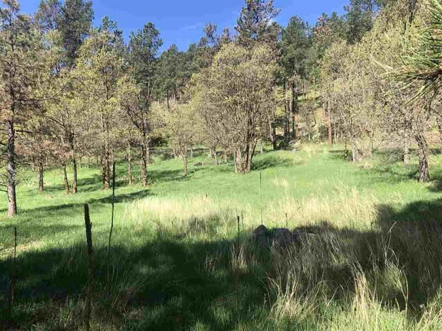 Tract Campfire Three Meadows Road, Keystone, SD 57751 (MLS #67080) :: Christians Team Real Estate, Inc.