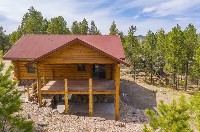 25250 Star Ridge Road, Custer, SD 57730 (MLS #67148) :: Black Hills SD Realty