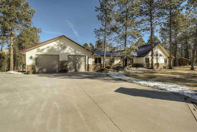 25002 Chandler Drive, Custer, SD 57730 (MLS #67221) :: Black Hills SD Realty