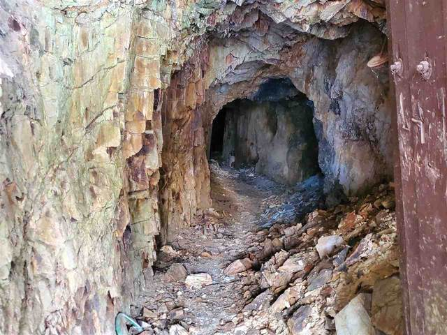 11301 Nevada Gulch Road, Lead, SD 57754 (MLS #67288) :: Black Hills SD Realty