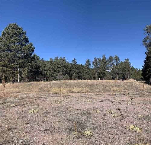 23550 Highway 85, Newcastle, WY 82701 (MLS #67703) :: Dupont Real Estate Inc.