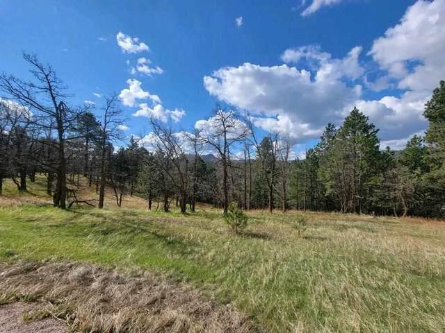 Lark Spur Road, Sturgis, SD 57785 (MLS #68155) :: Dupont Real Estate Inc.