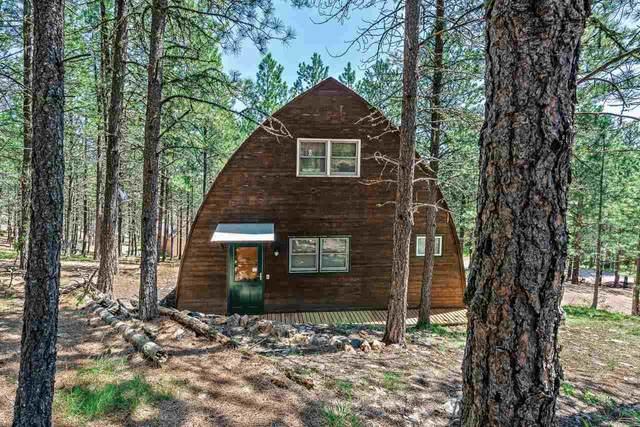 655 Alpine Drive, Rapid City, SD 57702 (MLS #68433) :: Daneen Jacquot Kulmala & Steve Kulmala