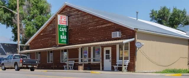 100 Highway 85, Buffalo, SD 57720 (MLS #69046) :: Daneen Jacquot Kulmala & Steve Kulmala