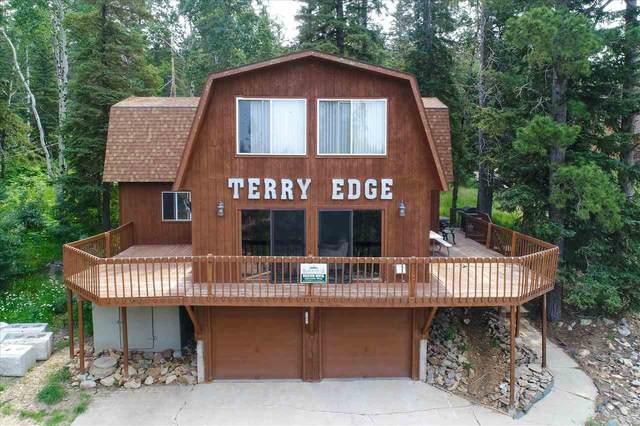 21157 Deep Snow Trail, Lead, SD 57754 (MLS #69119) :: Christians Team Real Estate, Inc.