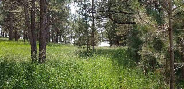 112 Trails End Court, Custer, SD 57730 (MLS #69182) :: Daneen Jacquot Kulmala & Steve Kulmala