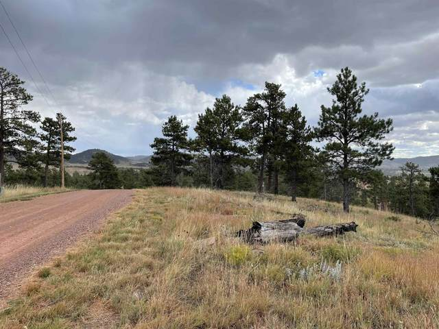 tbd Other, Hot Springs, SD 57747 (MLS #69473) :: VIP Properties