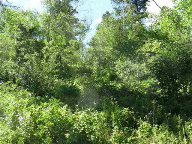 Bellefish Road, Central City, SD 57754 (MLS #32491) :: Christians Team Real Estate, Inc.