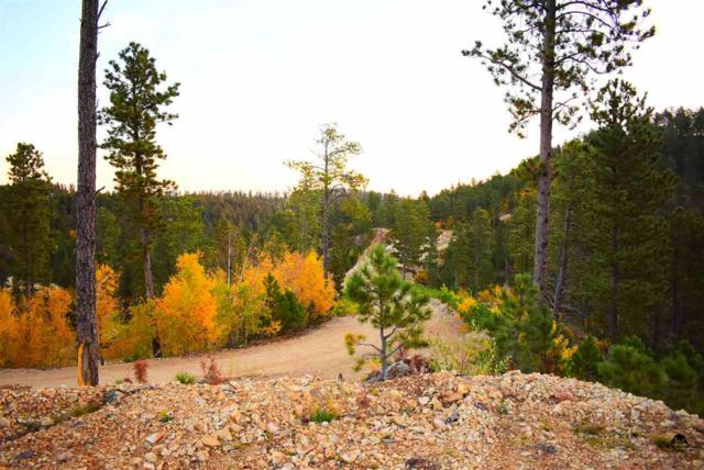 TRACT 4 Evergreen Estates, Lead, SD 57754 (MLS #51205) :: Christians Team Real Estate, Inc.