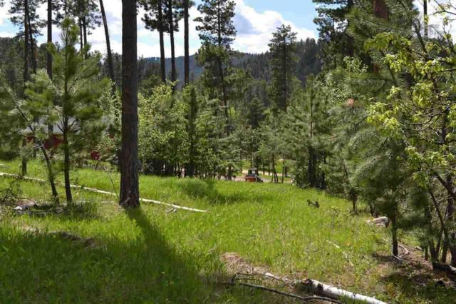 Lot 2 Paradise Acres I, Lead, SD 57754 (MLS #51511) :: Christians Team Real Estate, Inc.