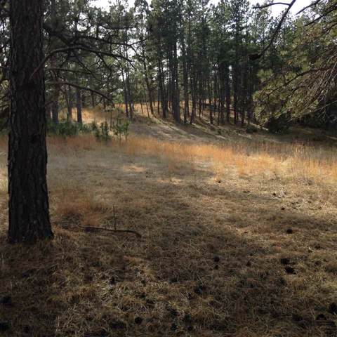 TBD Ridgeview & Grandview Drive, Hot Springs, SD 57747 (MLS #52356) :: Dupont Real Estate Inc.