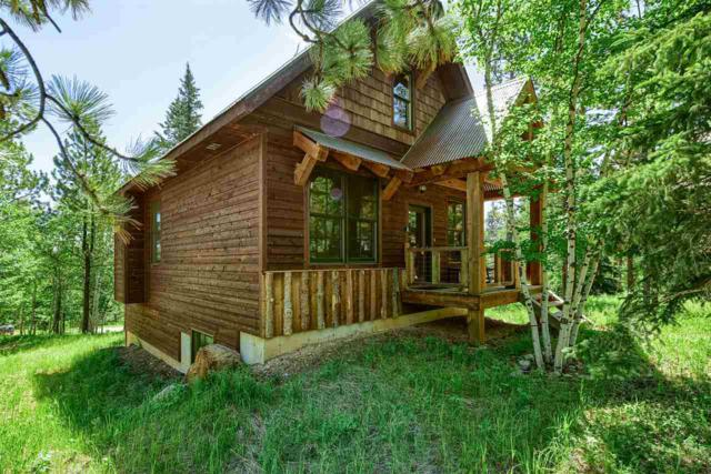 21156 Gilded Mountain Loop, Lead, SD 57754 (MLS #53538) :: Christians Team Real Estate, Inc.