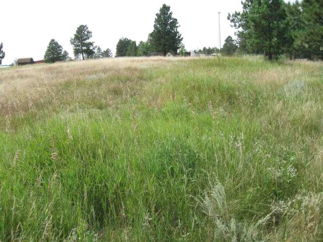 120 Trails End Court, Custer, SD 57730 (MLS #57478) :: Christians Team Real Estate, Inc.
