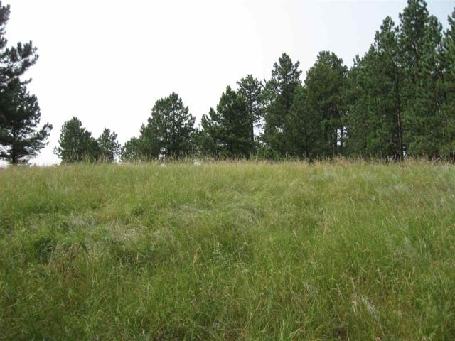 116 & 120 Trails End Court, Custer, SD 57730 (MLS #57479) :: Christians Team Real Estate, Inc.
