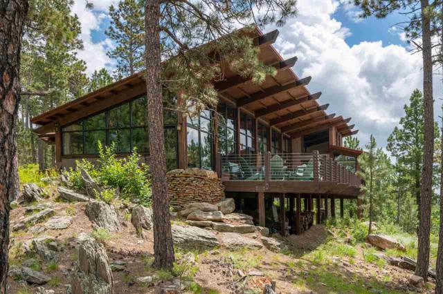 24452 Trackers Trail, Keystone, SD 57751 (MLS #58188) :: Christians Team Real Estate, Inc.