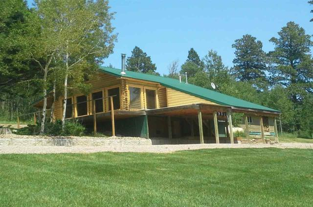 11077 Golden Tamarack Place, Deadwood, SD 57732 (MLS #58781) :: Christians Team Real Estate, Inc.