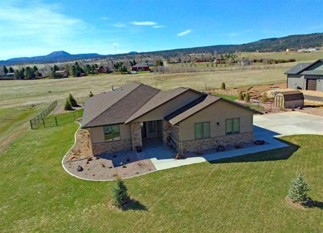 2475 Tumble Weed Trail, Spearfish, SD 57783 (MLS #60562) :: Dupont Real Estate Inc.