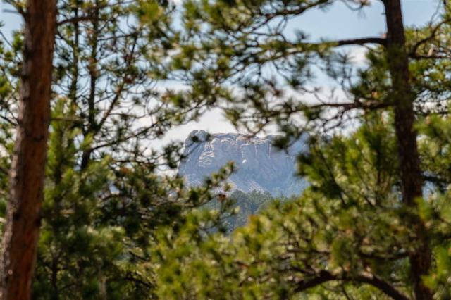 TBD Trackers Trail, Keystone, SD 57751 (MLS #60835) :: VIP Properties