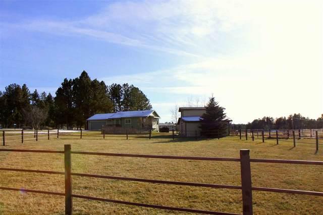 12050 Dakota Pine Rd., Custer, SD 57730 (MLS #63053) :: Christians Team Real Estate, Inc.