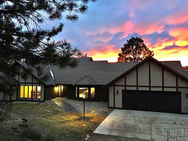 3655 Canyon View Court, Rapid City, SD 57701 (MLS #63296) :: Dupont Real Estate Inc.