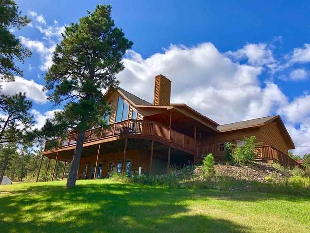 11123 Bighorn Road, Piedmont, SD 57769 (MLS #63770) :: VIP Properties