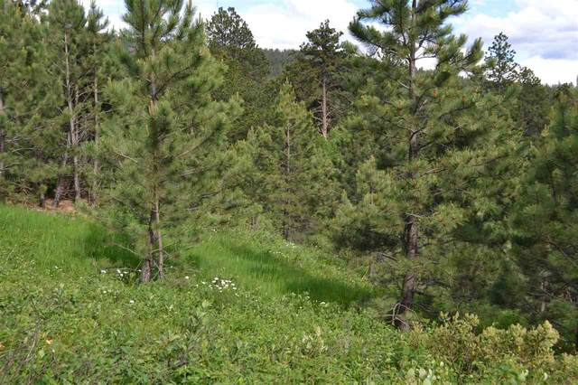 Tract D Last Chance Trail, Lead, SD 57754 (MLS #63973) :: Christians Team Real Estate, Inc.