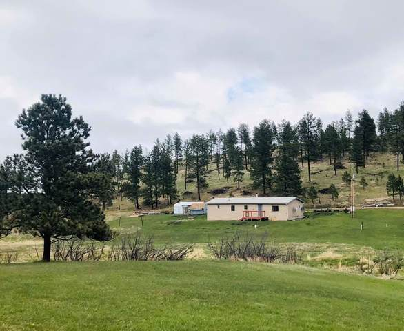 Lot 14 A 11800 Deerfield Road, Hill City, SD 57745 (MLS #64077) :: Dupont Real Estate Inc.
