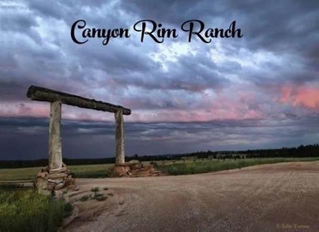 Big Sky 13 Elk Run Road, Custer, SD 57730 (MLS #64489) :: Dupont Real Estate Inc.