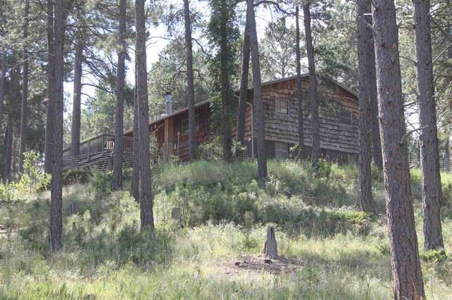 13744 W 47th Avenue, Rapid City, SD 57702 (MLS #65500) :: Dupont Real Estate Inc.