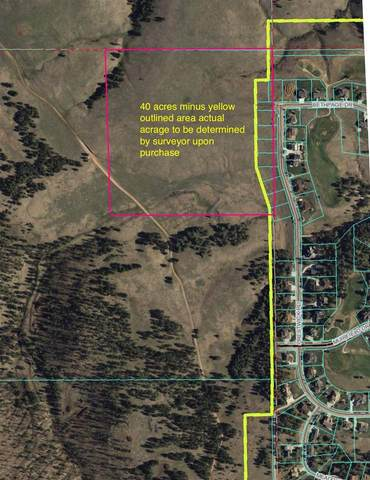 TBD Bethpage Drive, Rapid City, SD 57702 (MLS #65677) :: Dupont Real Estate Inc.
