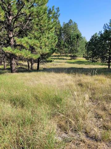 116 Trails End Court, Custer, SD 57730 (MLS #69597) :: Daneen Jacquot Kulmala & Steve Kulmala