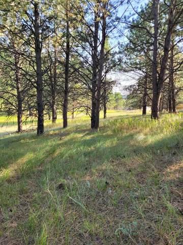 120 Trails End Court, Custer, SD 57730 (MLS #69598) :: Daneen Jacquot Kulmala & Steve Kulmala
