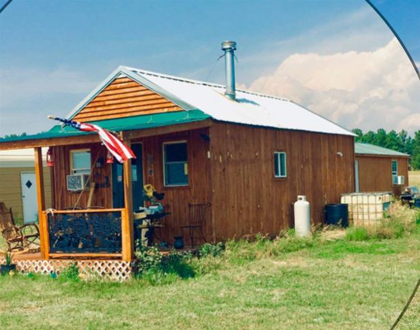 25474 Moonlight Drive, Custer County, SD 57735 (MLS #57325) :: VIP Properties