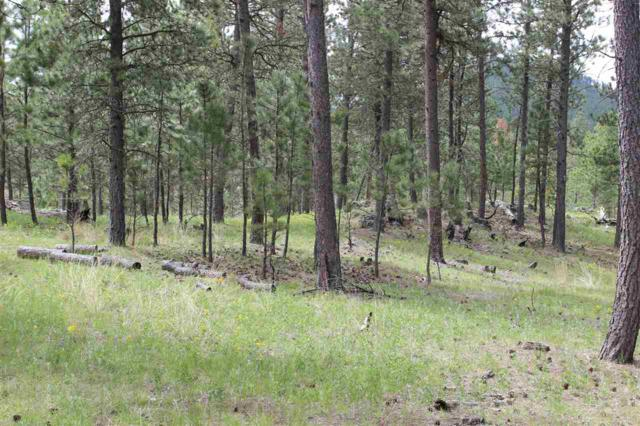 Lot 9 Caledonia Trail, Custer, SD 57730 (MLS #60810) :: Christians Team Real Estate, Inc.