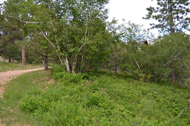 Tract D Last Chance Trail, Lead, SD 57754 (MLS #63973) :: Dupont Real Estate Inc.