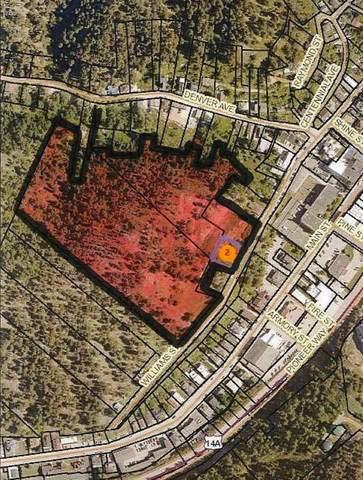 512 Williams Street, Deadwood, SD 57732 (MLS #65689) :: Dupont Real Estate Inc.