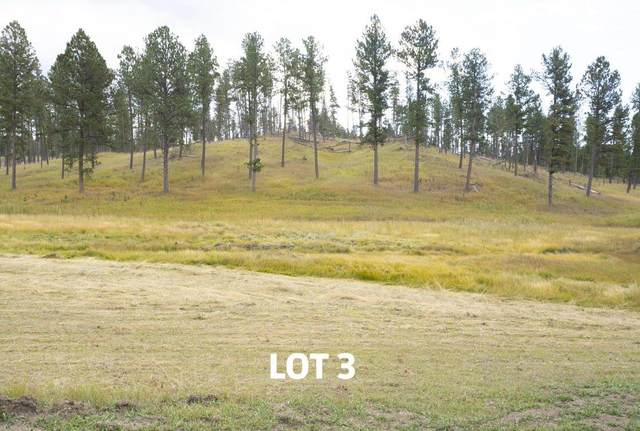 Lot 3 Other, Custer, SD 57730 (MLS #68764) :: Christians Team Real Estate, Inc.