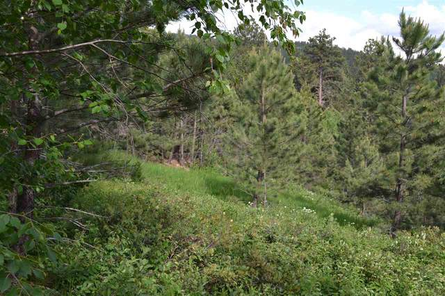 Tract D Last Chance Trail, Lead, SD 57754 (MLS #63973) :: Black Hills SD Realty