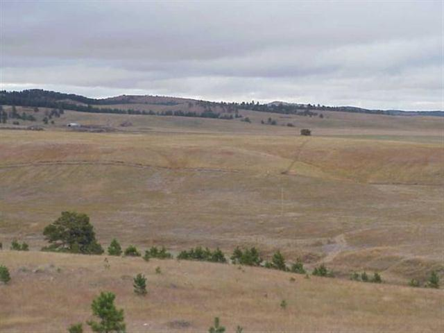 lot 45 Tah Cha Rd, Hermosa, SD 57744 (MLS #10384) :: Christians Team Real Estate, Inc.