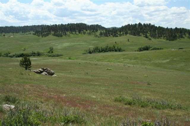 Lot 8 Hidden Valley Ranch, Belle Fourche, SD 57717 (MLS #24754) :: Christians Team Real Estate, Inc.