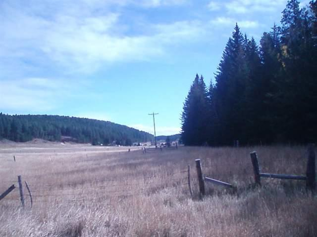 T.B.D. Nemo Road, Deadwood, SD 57732 (MLS #36927) :: Dupont Real Estate Inc.