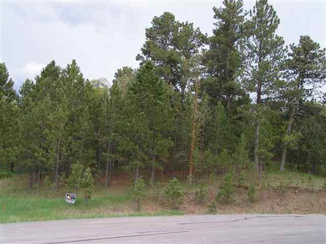 Lot 12 Frog Pond Court, Whitewood, SD 57793 (MLS #41954) :: Christians Team Real Estate, Inc.