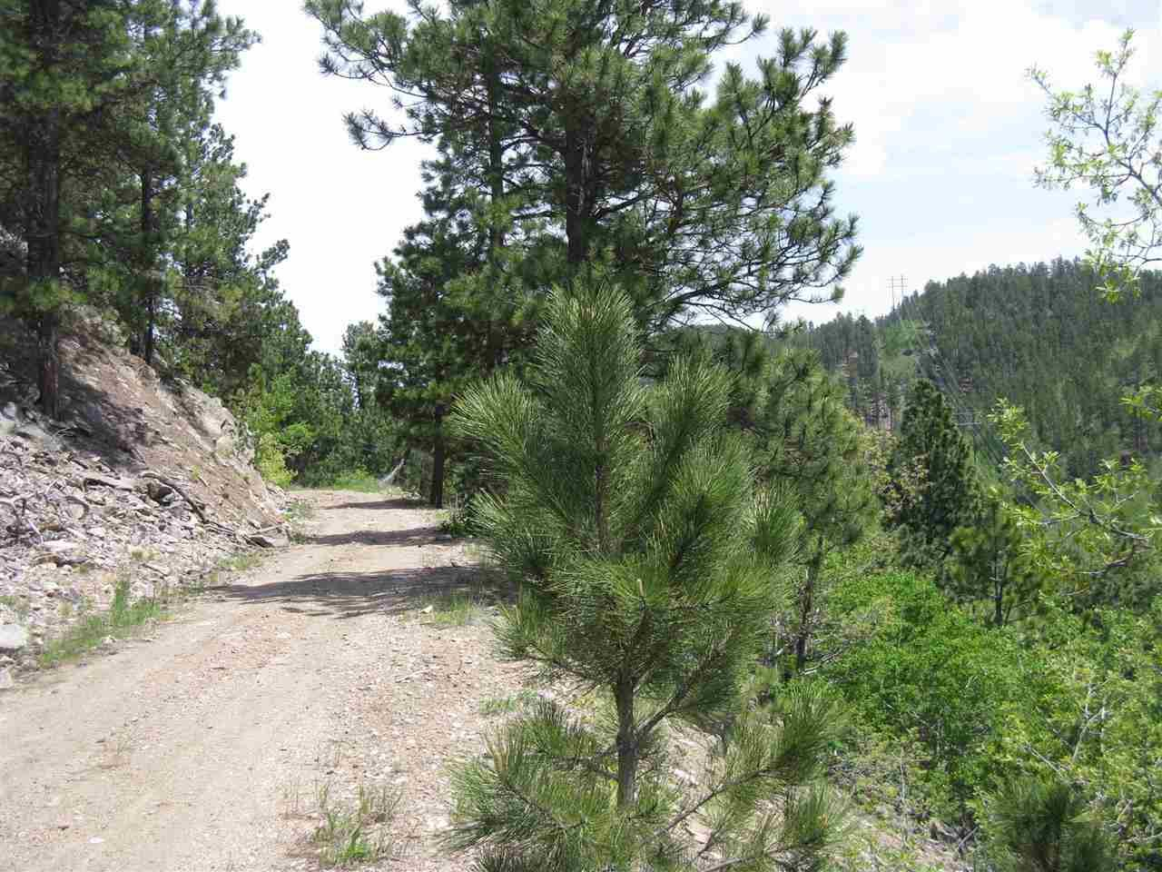 Cutting Mine Road - Photo 1