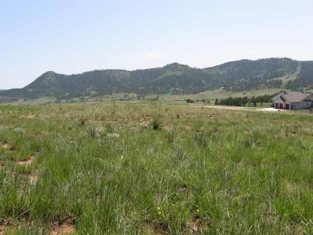 315 Meadowlark Drive, Hot Springs, SD 57747 (MLS #47667) :: Dupont Real Estate Inc.