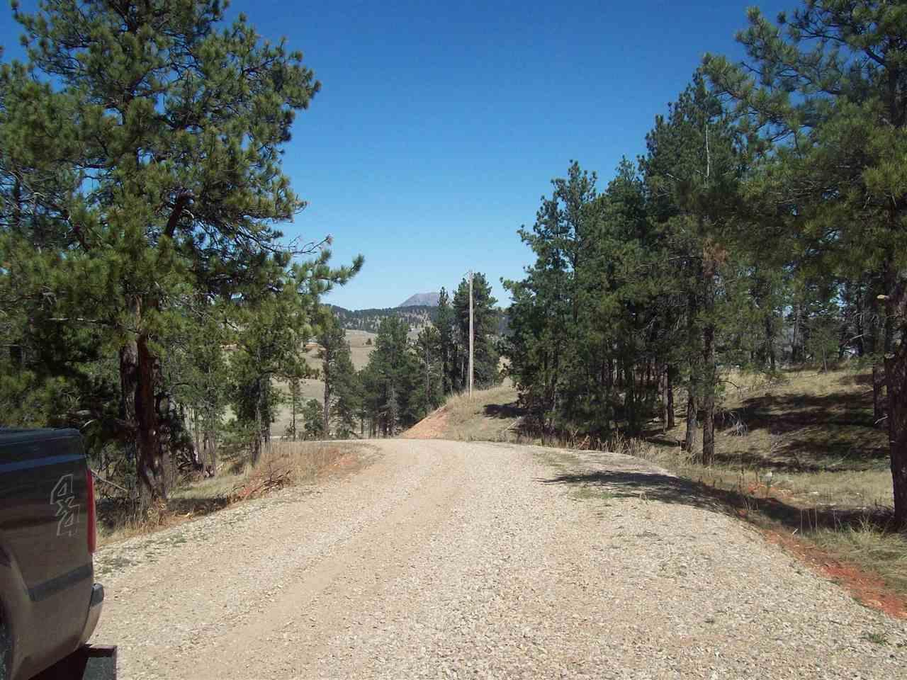 00 Dolan Creek Road - Photo 1