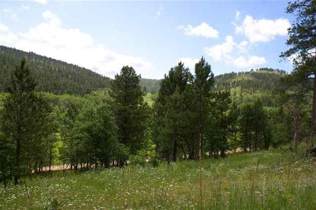 Lot 31 Two Bit Ranch Estates, Deadwood, SD 57732 (MLS #50621) :: VIP Properties