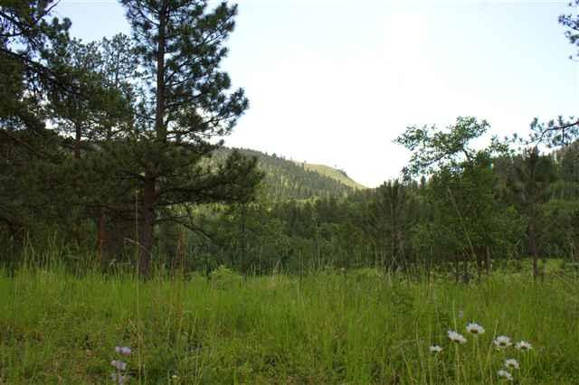 Lot 30 Two Bit Ranch Estates, Deadwood, SD 57732 (MLS #50622) :: VIP Properties
