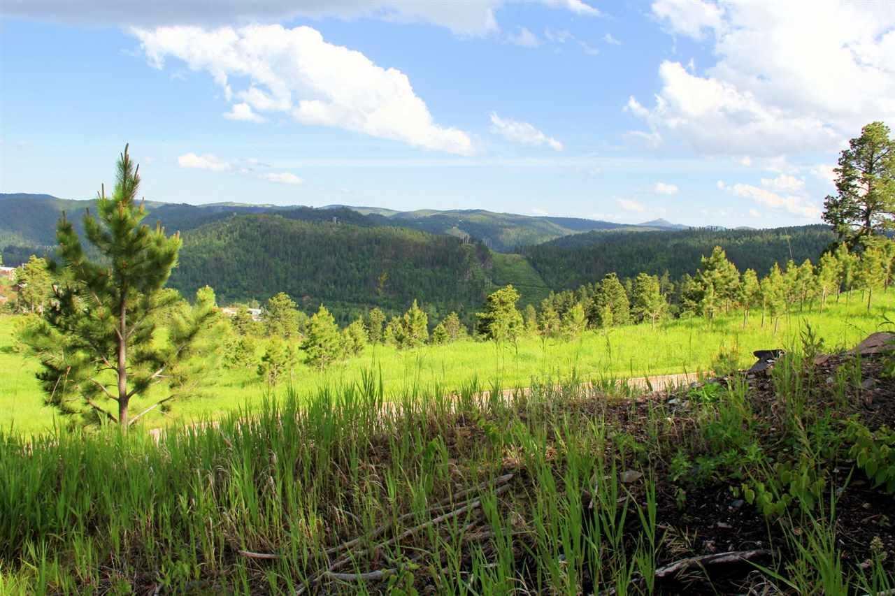 Lot 16 Blk 5 Mountain View Drive - Photo 1
