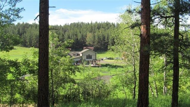 248 Minor Lake Circle, Hill City, SD 57745 (MLS #50787) :: Christians Team Real Estate, Inc.